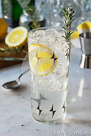 Free Rosemary Lemon Gin Fizz Or Vodka Smash Cocktail Stock Photography - 108669092