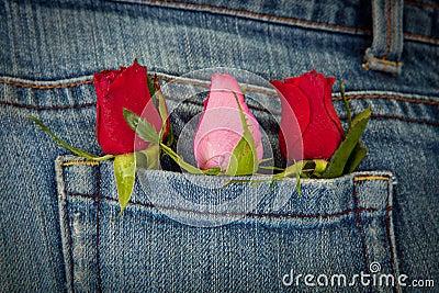 Rosen in der Tasche