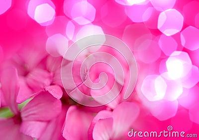 rosen kleine blumen stockfotos bild 11027743. Black Bedroom Furniture Sets. Home Design Ideas
