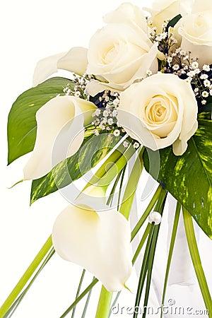 Free Roses Royalty Free Stock Photos - 17365118