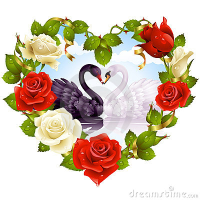 Free Roses And Couple Swans Royalty Free Stock Image - 15670736