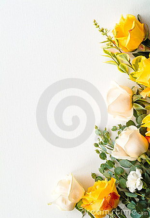 Roses arranged as a border