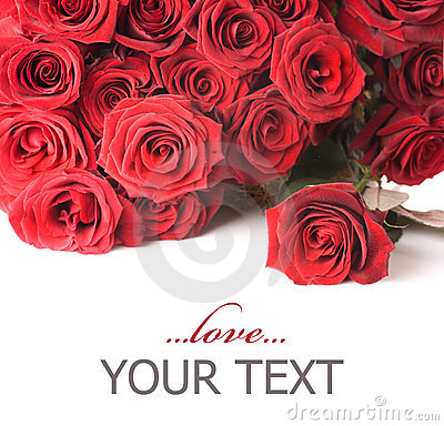 Free Roses Border Stock Photos - 12353913