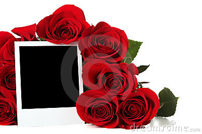 Roses with empty photo