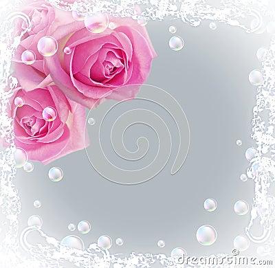 Roses et bulles