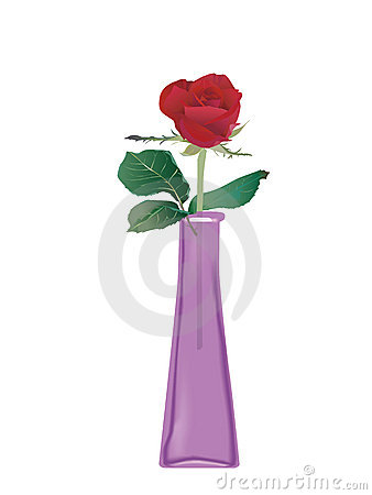 Roses in glass bottle