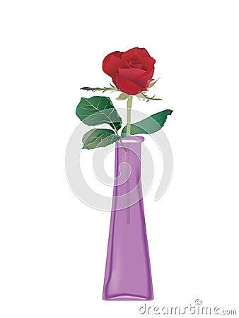 Roses in glass bottle
