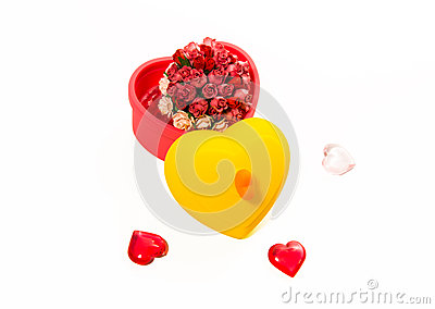Roses in heart shape box isolated on white background