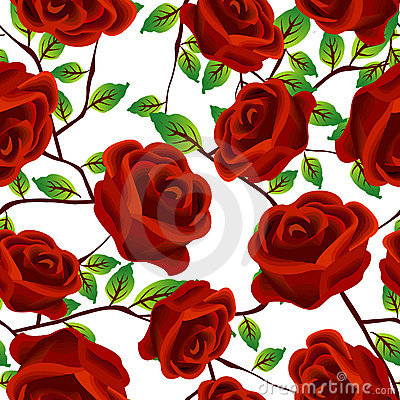 Roses over white, pattern