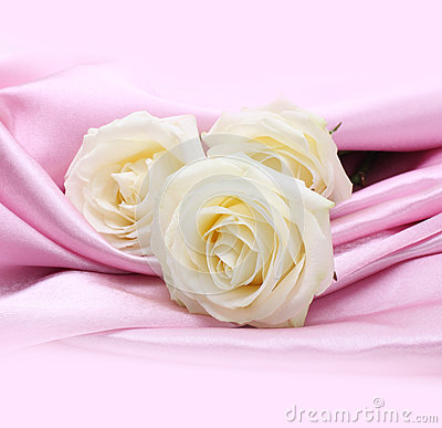 Roses on pink silk background