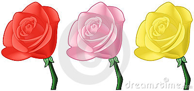 Roses - Red, Pink, Yellow - Vector Art Royalty Free Stock Images - Image: 8212929