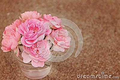 Roses In Vase on Brown