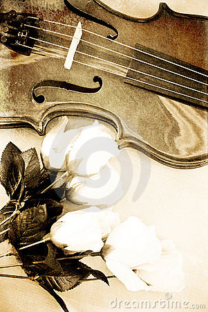 Roses and a Violin