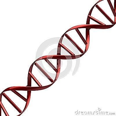 Roter DNA-Auszug