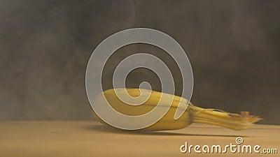 Roterande mogen banan i rök och friskhet på en svart bakgrund närbild ultrarapid stock video