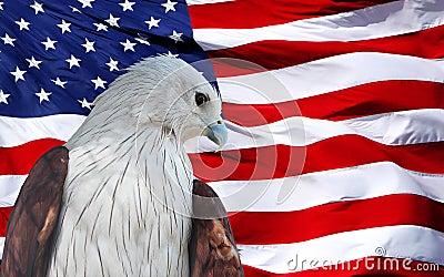 ROTES Eagle eingestellt gegen amerikanische Flagge.