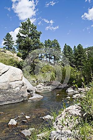 Rotsen in de rivier
