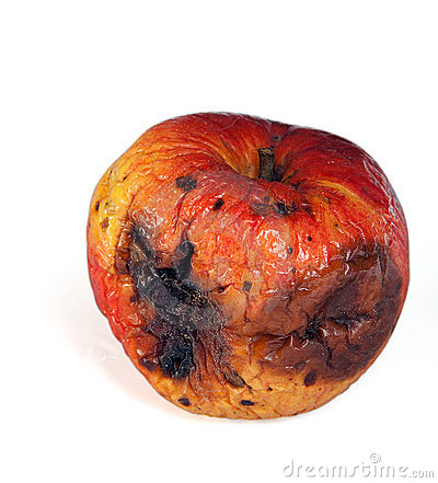 rotten apple stock photography image 13258722