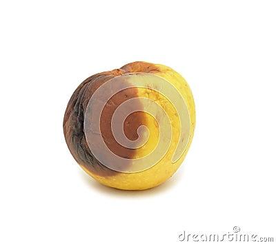 Rotten apple, isolated