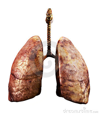 Rotten lungs