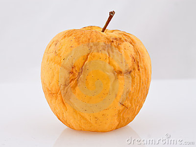 Rotten old apple with clipping path