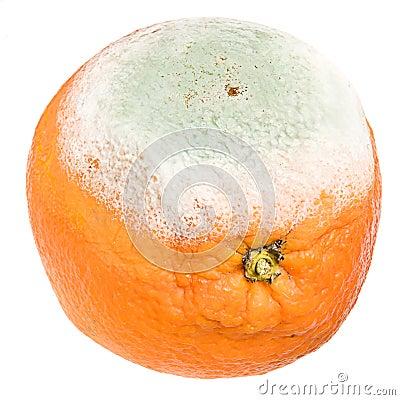 Rotten orange