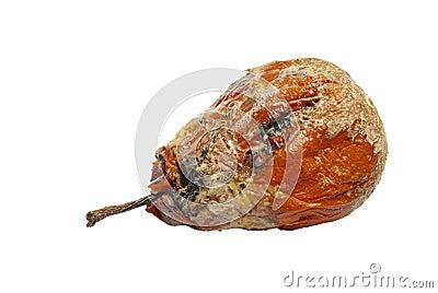 Rotten Pear