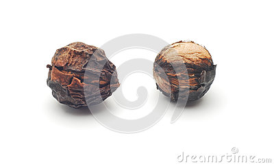 Rotten walnuts