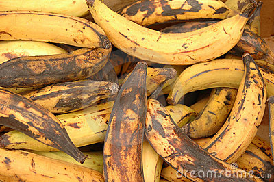 Rotting bananas