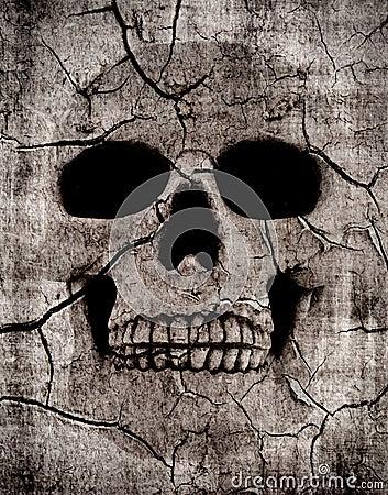 Rotting skull