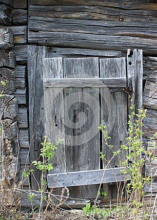 Rotting wooden door