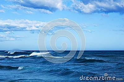 The rough ocean