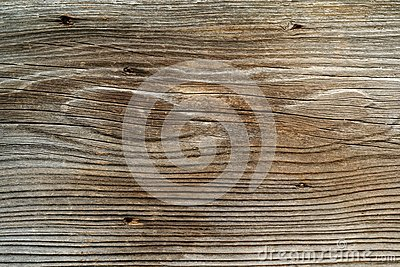 Rough old plank of wood