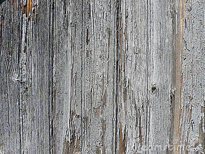 Rough textured wood background