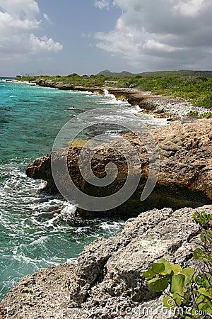 Rough tropical coastline