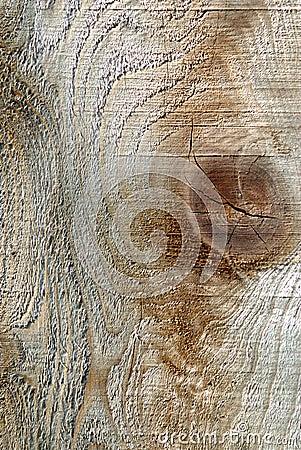 Rough Wood Grain