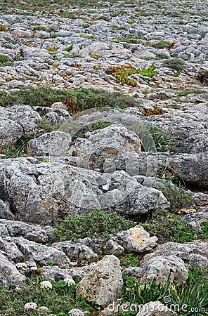 Roughy rocky terrain in Sagres, Portugal