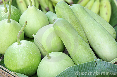 Round and elongated bottle green gourds