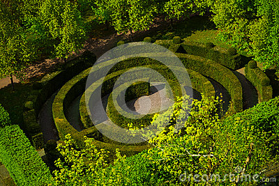 Round shape labyrinth green bush in Luxembourg