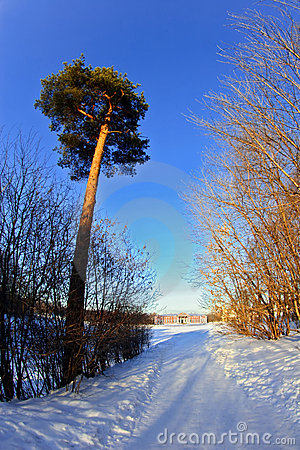 Route de palais neigeuse à