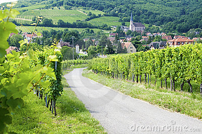 Route du vine, Alsace,