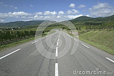 Route du Vine, Alsace.