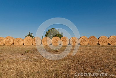 Row of bales of hay
