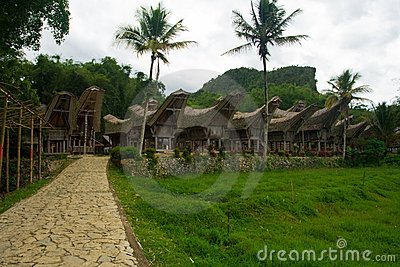 Row of Boat Houses Tana Toraja Village