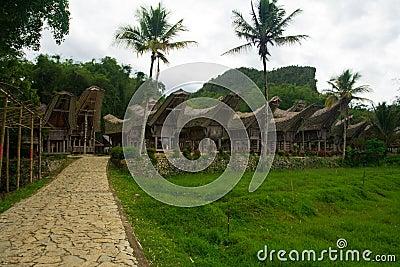 Row of Boat Houses Tana Toraja Village