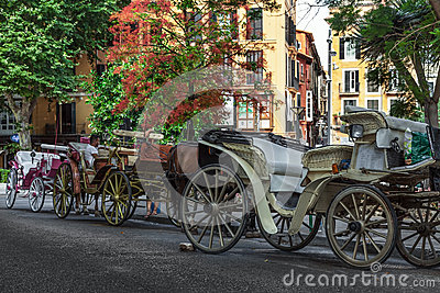Row of Carriages Editorial Photography