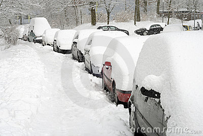Row of cars covered in snow