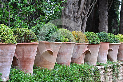 Row of clay pots