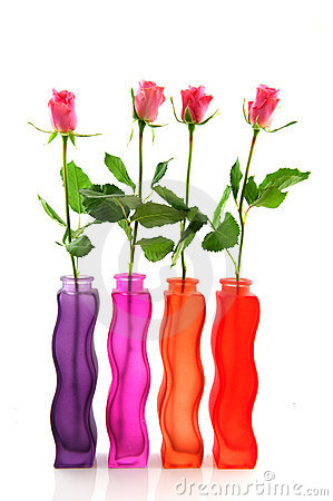 Row with colorful roses