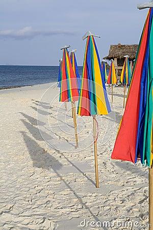 A row of colorful umbrellas